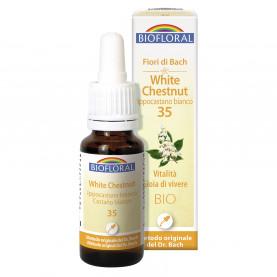 White chesnut - Ippocastano bianco - 20 ml | Biofloral