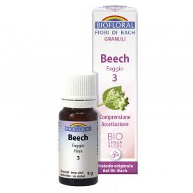 Beech - Faggio - 9 g | Biofloral