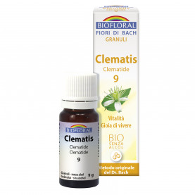 Clematis - Clematide - 9 g | Biofloral