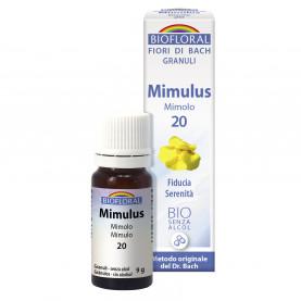 Mimulus - Mimolo - 9 g | Biofloral