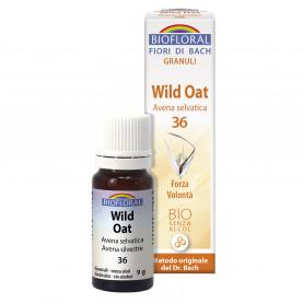 Wild oat - Avena selvatica - 9 g | Biofloral