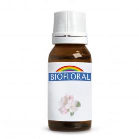 La mia bottiglia Fiori di Bach - 30 ml | Biofloral
